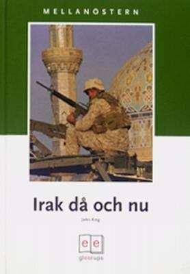 Inspektionerna fortsatter i irak